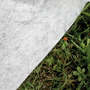 Piscina Gre Interrata Madagascar 420x150 KPE4259